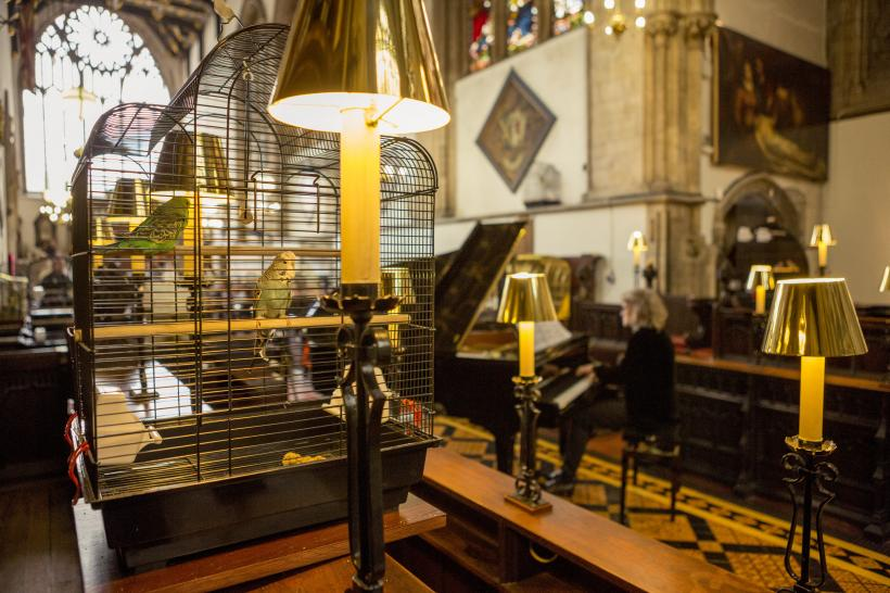 Annika Kahrs A Concert for the Birds Performance. The Lord Mayor's Chapel, Bristol, 2014. Produced by Situations. Photo: Max McClure. Courtesy Situations (Performance Event:  Louis d'Heudieres and Annika Kahrs 0)